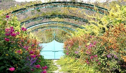日本高知縣莫內之庭花之庭
