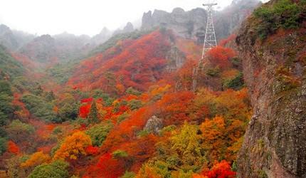日本四國香川紅葉楓葉推薦寒霞溪