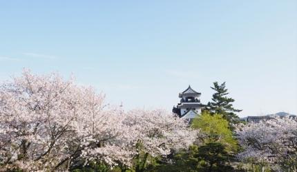 日本山陽山陰櫻花推薦高知高知城