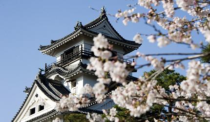 日本四國高知城