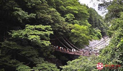 四國自由行搭乘觀光巴士「KOTOBUS IYA VALLEY」前往德島祖谷觀看藤蔓橋絕景