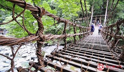 日本四國德島祖谷的藤蔓橋橋身