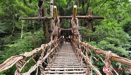 日本四國德島祖谷的藤蔓橋絕景