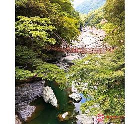 四國自由行搭乘觀光巴士「KOTOBUS IYA VALLEY」前往德島祖谷的藤蔓橋(かずら橋)