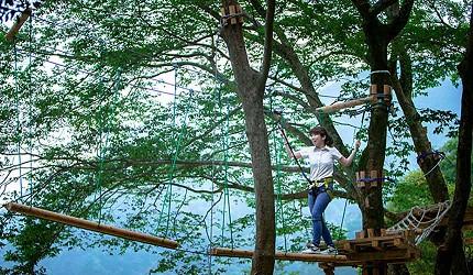 日本四國德島祖谷的樹間行走體驗
