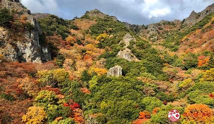 四國「小豆島」必去紅葉秘境「寒霞溪山谷」遠照