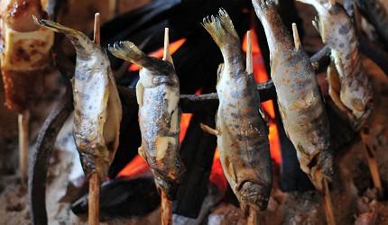 四國德島「三好市祖谷」必去的景點推薦的圍爐裏炭火燒