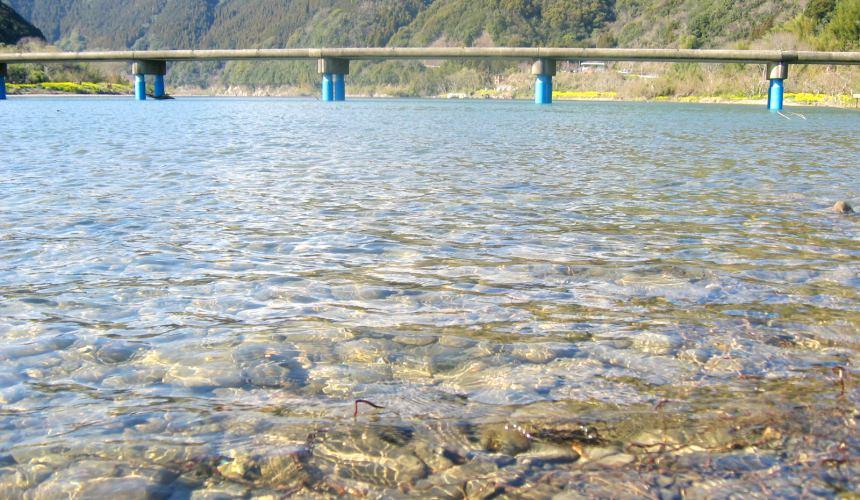 高知景點推薦四萬十川沈下橋日劇遲開的向日葵取景