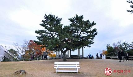 四国「小豆岛」必去红叶秘境「寒霞溪山谷」的恋人圣地爱心树