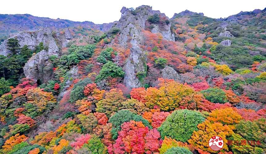 四国「小豆岛」必去红叶秘境「寒霞溪山谷」的红叶与奇岩巨石