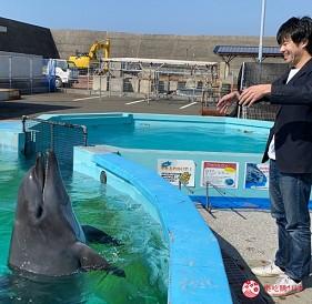 親子旅遊必去推薦四國水族館超另類騎乘海豚好刺激學校泳池養大魟魚的室戶海豚中心的指揮海豚唱歌體驗