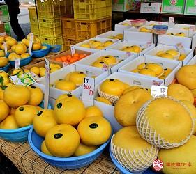 四國深度旅遊推薦推介弘人市場吃鰹魚日曜市買日本水果帶你看最道地的高知的弘人市場的必逛日曜朝市可找到的日本水果高知特產的金黃色柚子