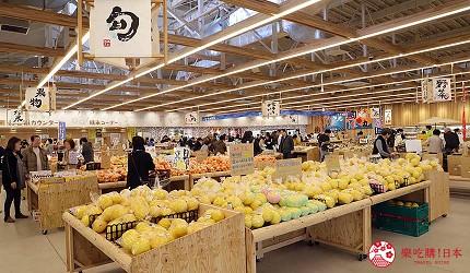 四國高知超好逛道地菜市場買伴手禮推薦推介工業風高知蔦屋書店打卡拍美照的JA農夫市集「土佐之里」內新鮮蔬果區