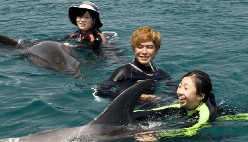親子旅遊必去推薦四國水族館超另類騎乘海豚好刺激學校泳池養大魟魚的手摸超可愛海豚